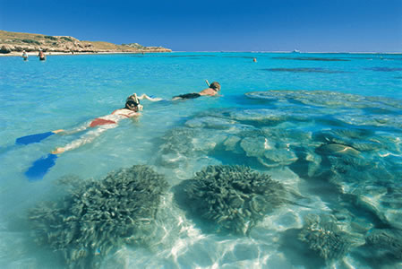 Ningaloo Reef Resort - Redcliffe Tourism