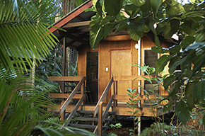 Cape Trib Beach House - Redcliffe Tourism