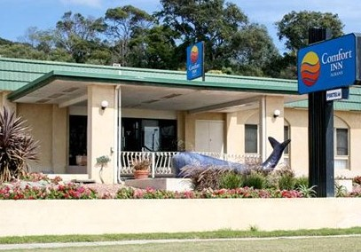 Comfort Inn Albany - Redcliffe Tourism