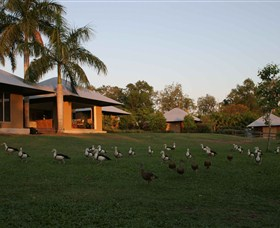 Feathers Sanctuary - Redcliffe Tourism