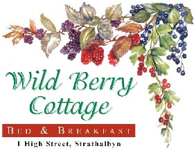 Wild Berry Cottage - Redcliffe Tourism