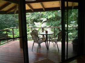 Cape Trib Exotic Fruit Farm Bed and Breakfast