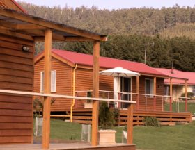 Maydena Country Cabins Accommodation  Alpaca Stud - Redcliffe Tourism