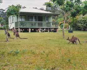 Berringer Lake Holiday Cottages