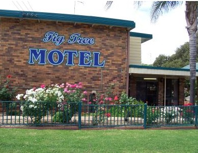 Fig Tree Motel - Redcliffe Tourism