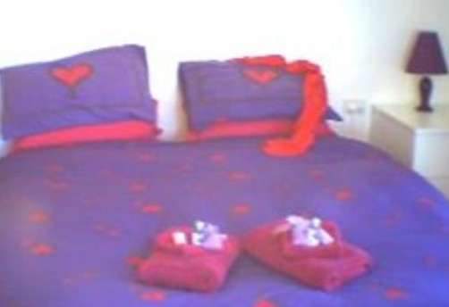 Aloomba Lavender - Accommodation - Redcliffe Tourism