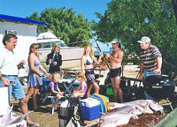 Shark Bay Cottages - Redcliffe Tourism