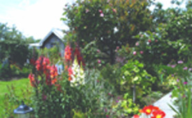 Hopfield Country Cottages - Redcliffe Tourism