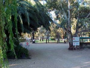 Kingston-On-Murray Caravan Park - Redcliffe Tourism