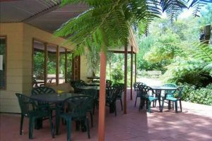 Rainforest Retreat Murray Bridge - Redcliffe Tourism