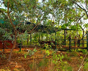 Arnhemland Barramundi Nature Lodge - Redcliffe Tourism