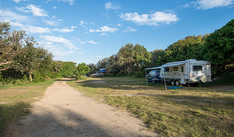 Racecourse Campground - Redcliffe Tourism