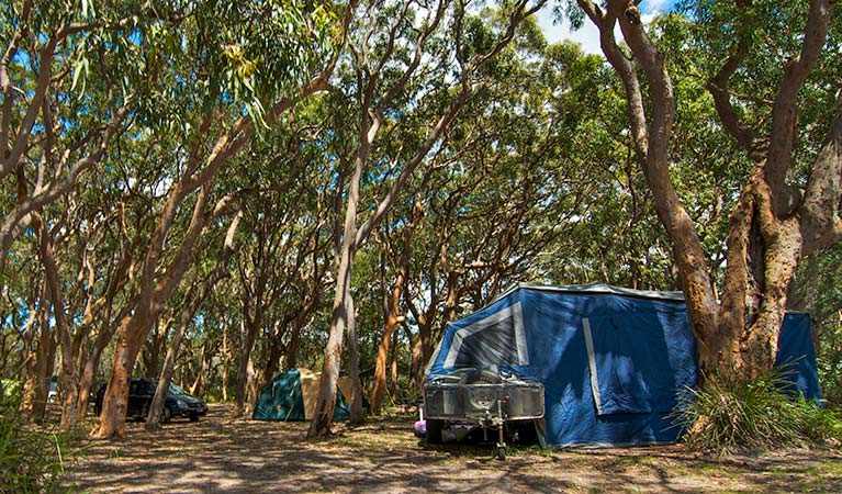 Stewart and Lloyds campground - Redcliffe Tourism