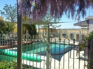 Must Love Dogs BB and Self-Contained Cottage - Redcliffe Tourism