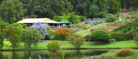 Pemberton Lavender and Berry Farm Cafe and Cottages - Redcliffe Tourism