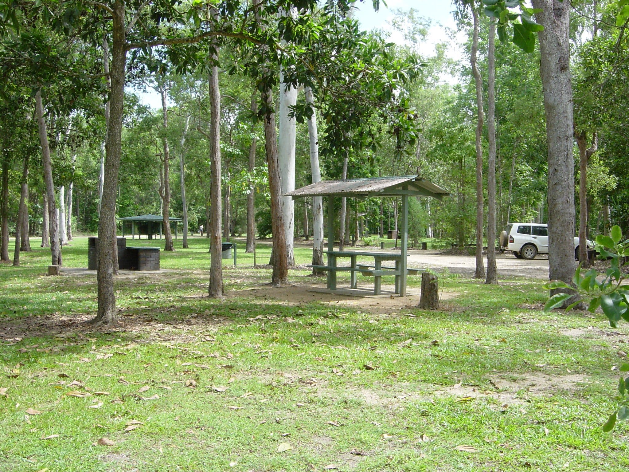 Broadwater camping area Abergowrie State Forest - Redcliffe Tourism