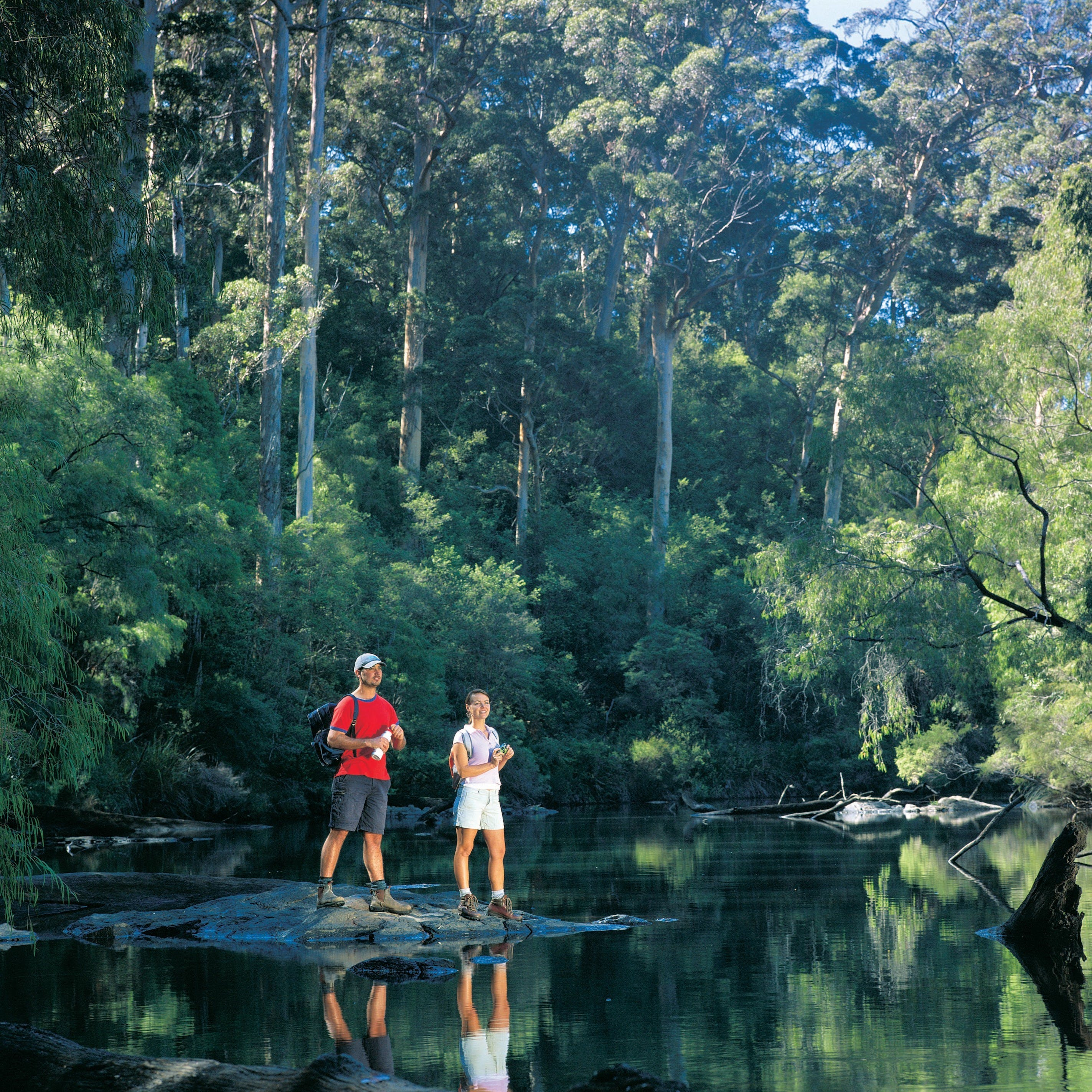 Drafty's Camp at Warren National Park - Redcliffe Tourism