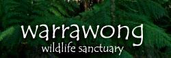 Warrawong Wildlife Park - Redcliffe Tourism
