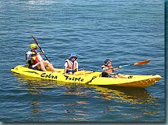 Manly Kayaks - Redcliffe Tourism