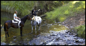 Glenworth Valley Horseriding - Redcliffe Tourism