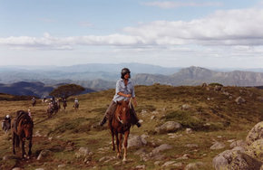 High Country Horses - Redcliffe Tourism