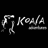 Koala Adventures - Redcliffe Tourism