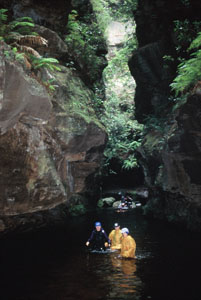 High And Wild Mountain Adventures - Redcliffe Tourism