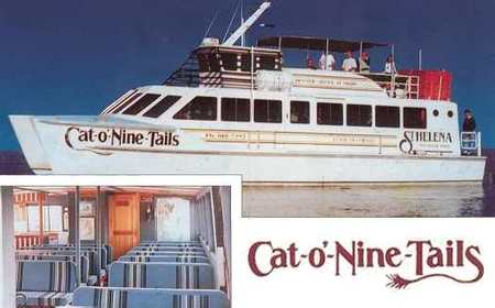 Cat O' NineTails - Redcliffe Tourism