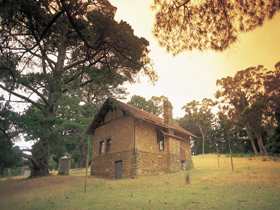 Heysen - The Cedars - Redcliffe Tourism
