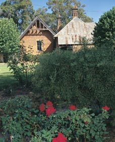 Heritage Rose Garden - Redcliffe Tourism