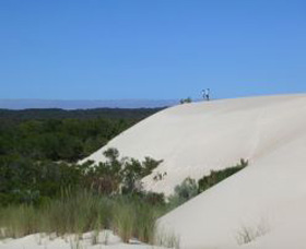 Yeagerup Sand Dunes - Redcliffe Tourism