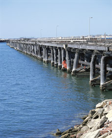 Old Timber Jetty - Redcliffe Tourism