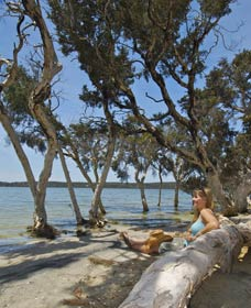 Stokes National Park - Redcliffe Tourism