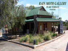 Rain Moth Gallery - Redcliffe Tourism