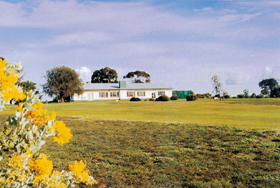 Lucindale Country Club - Redcliffe Tourism