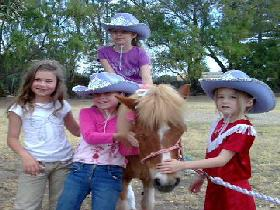 Amberainbow Pony Rides - Redcliffe Tourism