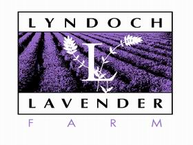 Lyndoch Lavender Farm and Cafe - Redcliffe Tourism
