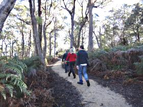 Bridport Walking Track - Redcliffe Tourism