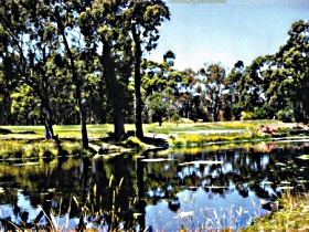 Smithton Country Club - Redcliffe Tourism