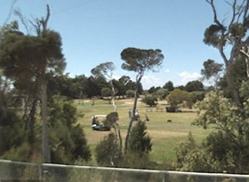 Greens Beach Golf Course - Redcliffe Tourism