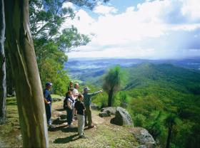 Gold Coast Hinterland Great Walk