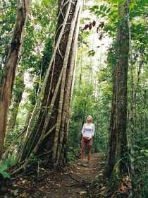 Wet Tropics - Redcliffe Tourism
