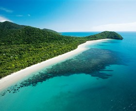 Cape Tribulation Daintree National Park - Redcliffe Tourism