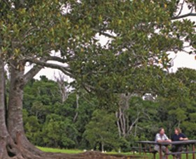 Ravensbourne National Park - Redcliffe Tourism