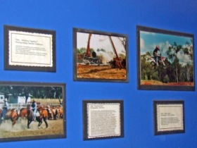 Town Hall Photographic Display - Redcliffe Tourism