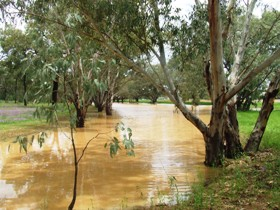 Saddliers Waterhole and Hamburg Creek - Redcliffe Tourism