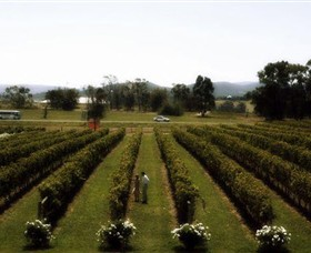 Rochford Wines - Redcliffe Tourism