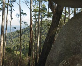Gulaga National Park - Redcliffe Tourism