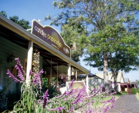 Passionfish Candles - Redcliffe Tourism