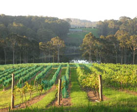 Tilba Valley Wines - Redcliffe Tourism